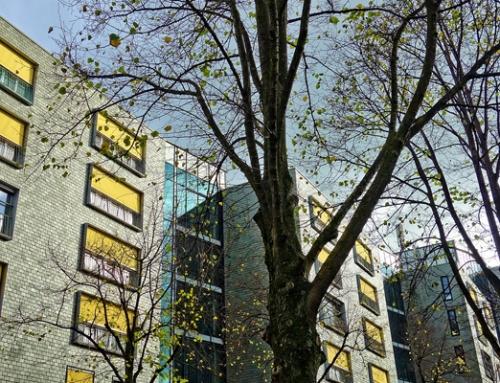 Energía lanza una consulta pública previa sobre el Proyecto de Real Decreto de contabilización de consumos individuales