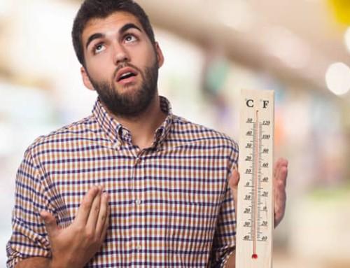 ¿Cuál es la temperatura ideal en verano?